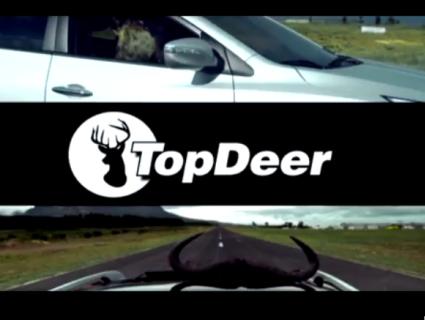 Hyundai-Top-Deer