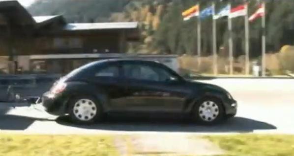 Beetle-video
