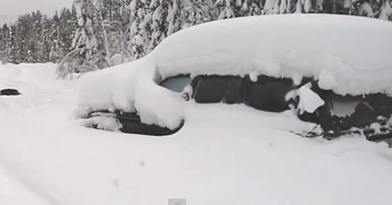 Man-survives-snow