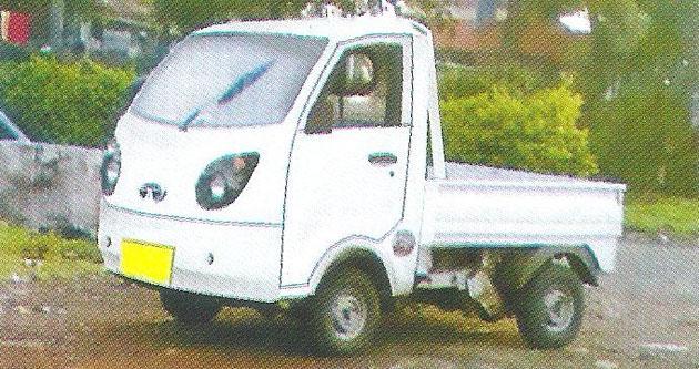 Tata Penguin