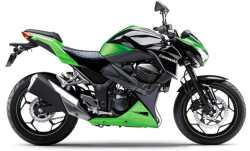 Kawasaki-Ninja-300-Naked-Small