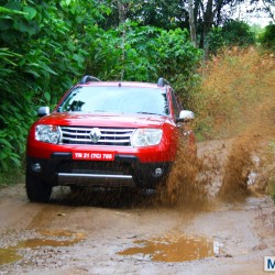 Renault experiences 800 percent growth in sales. 6313 Duster SUVs sold last month