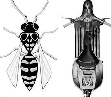 vespa wasp 3