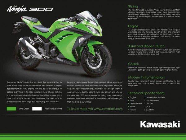 2013 Kawasaki Ninja 300R India Launch 2