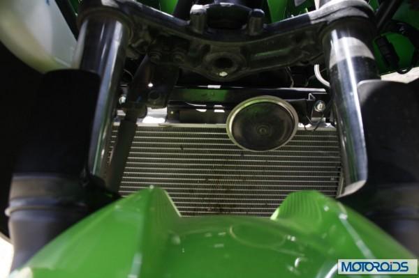 Kawasaki Ninja 300 review India (11)