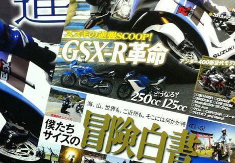 Suzuki-GSX250R-2