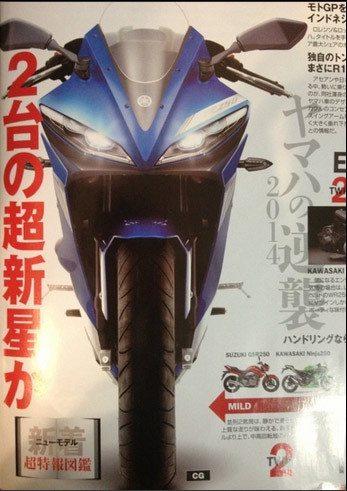 Yamaha R25 India