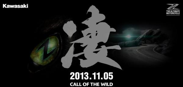 Kawasaki-Z1000-Pics-Release-Date-2