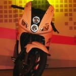 Details and Pics Galore- The New Hero Karizma ZMR 2013