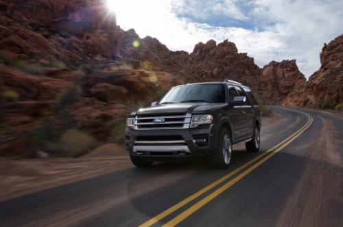 2015 Ford Expedition images 3