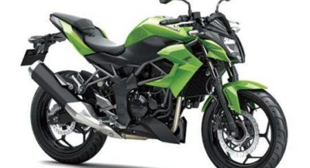 Kawasaki-Ninja-Z250-SL-Image-2