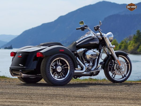 Harley Davidson Freewheeler (1)