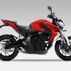 Honda Hornet 800 Might Come in 2015