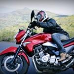 Suzuki Inazuma GW250 Review : Mellow Brute