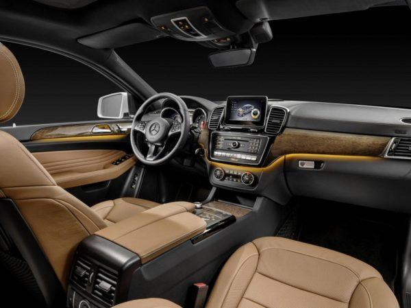 2015 Mercedes-Benz GLE (19)