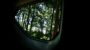 Datsun GO+ 3rd row window