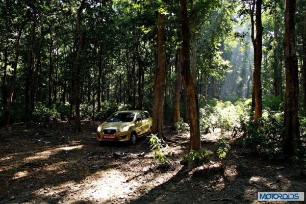 Datsun GO+in the forest