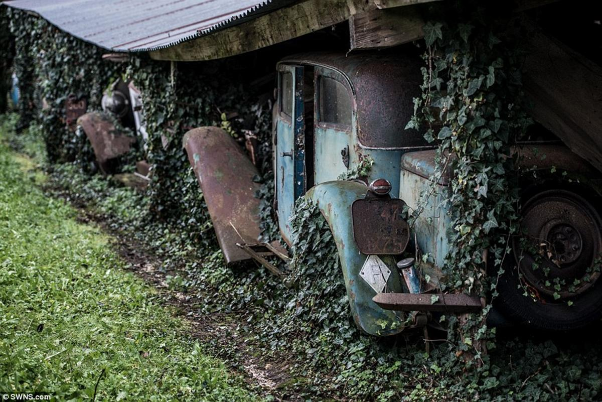 exotic cars found in french barn (3)