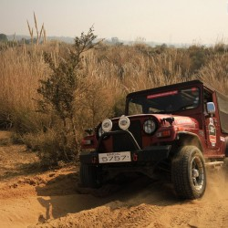 120th Mahindra Great Escape concludes in Rajasthan