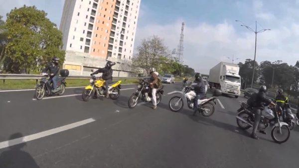 Bikers save dog
