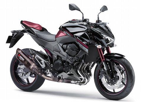 Kawasaki-Z800 sugomi edition