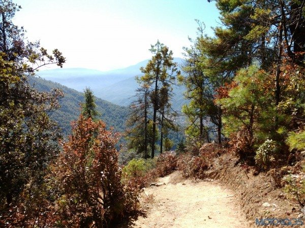 2015 BBIN Rally - Hike to the Tiger's Nest (21)