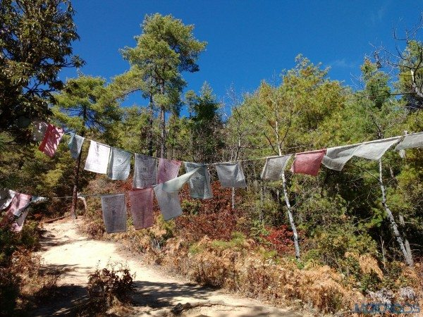 2015 BBIN Rally - Hike to the Tiger's Nest (22)