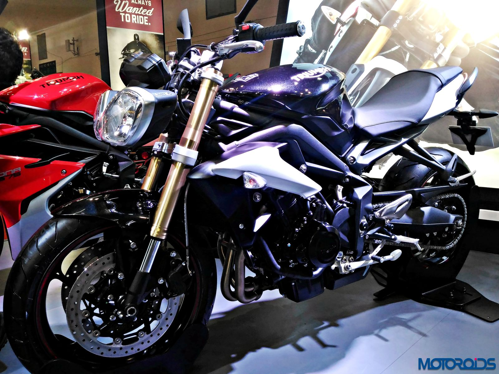 Triumph Motorcycles Stand - Auto Expo 2016 (59)