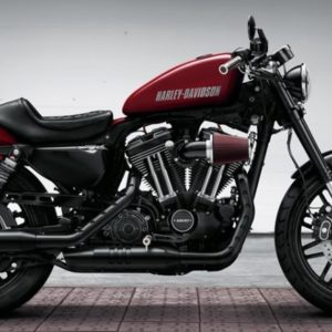 5 Irresistible Ways to Customize Your Harley Davidson