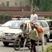 Ram Prasad Sharma odd even rule by pass 180x180 VIDEO: BJP MPs bypass odd even rule in Delhi, arrive at Parliament on a horse, cycle