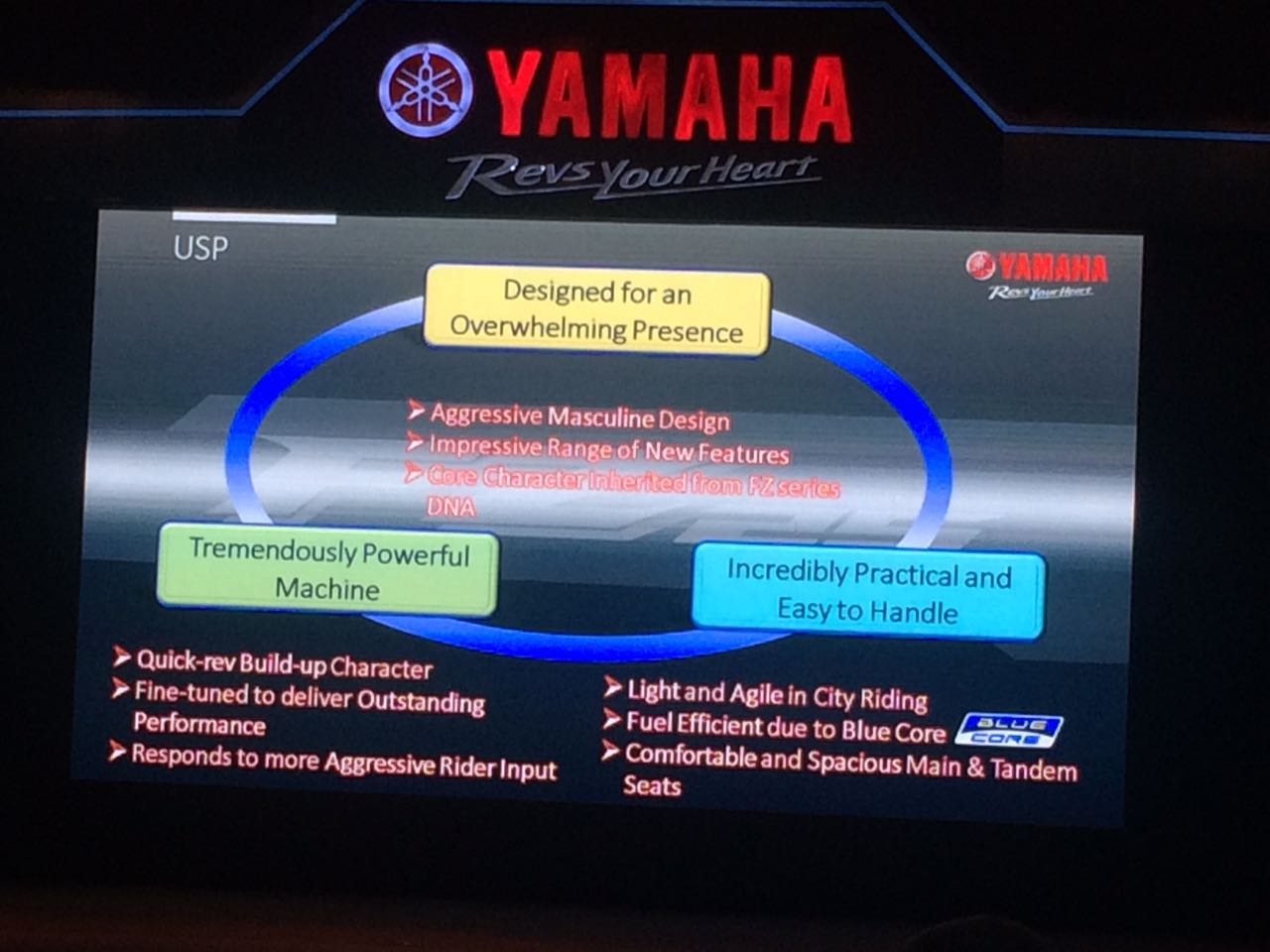 Yamaha-FZ250-India-launch-4