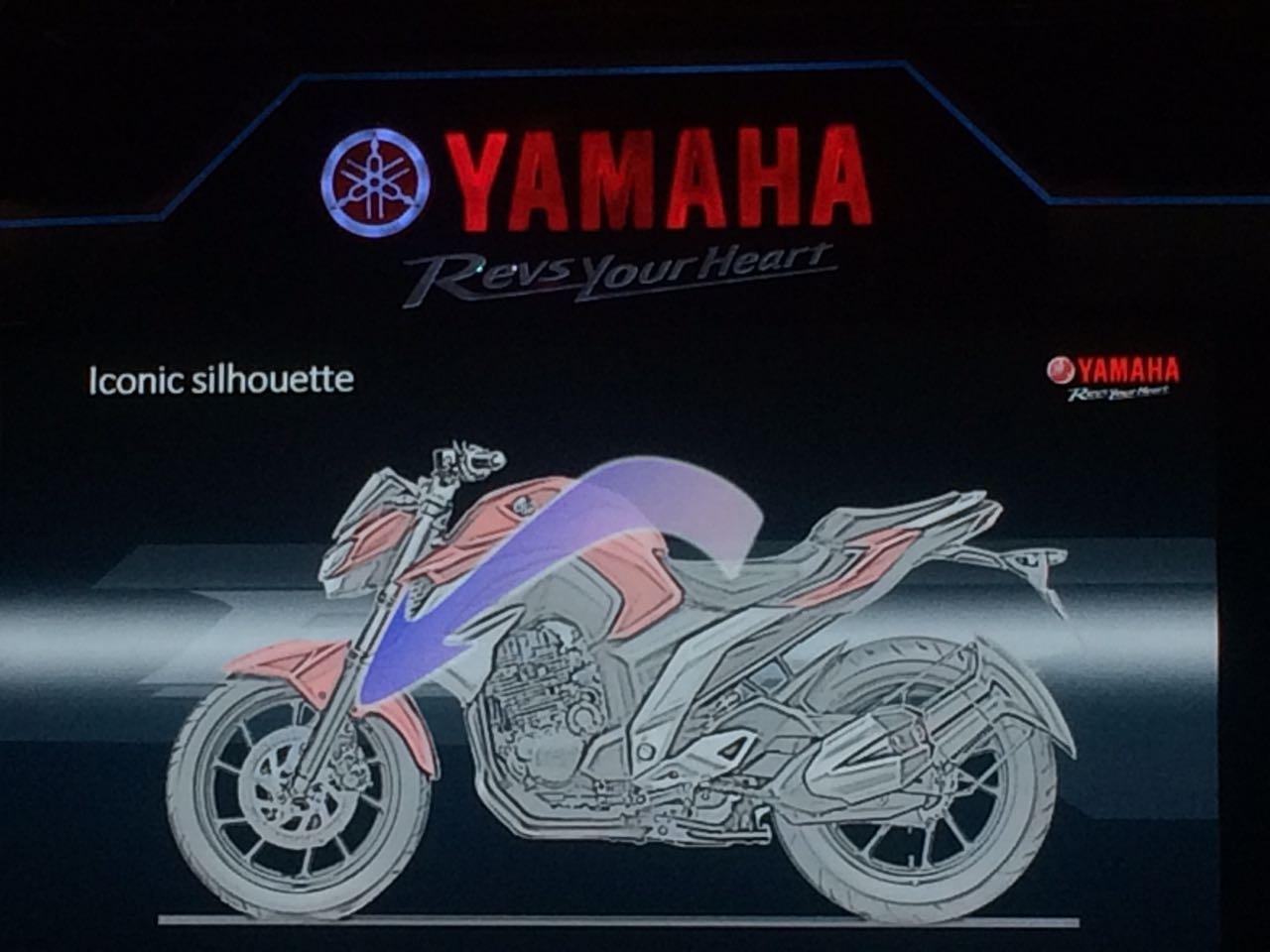 Yamaha-FZ250-India-launch-8