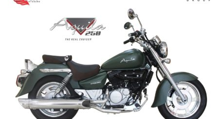 Aquila 250 Bike -(Green)