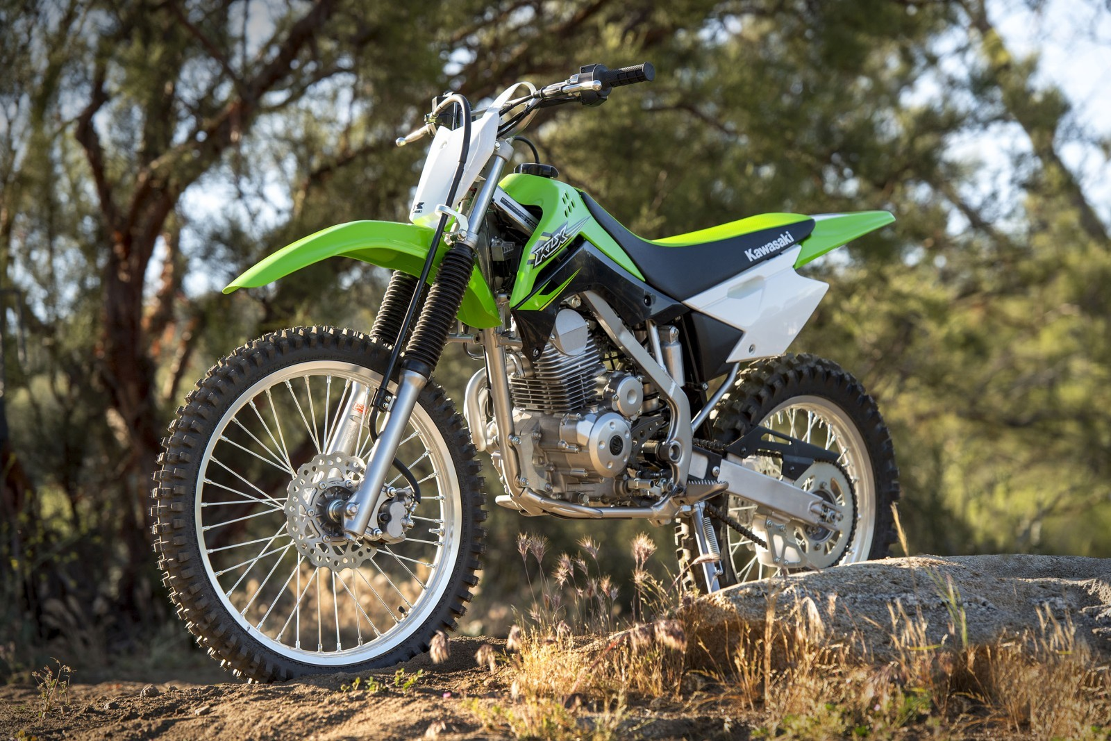 Kawasaki-KLX140-Official-Photographs-7