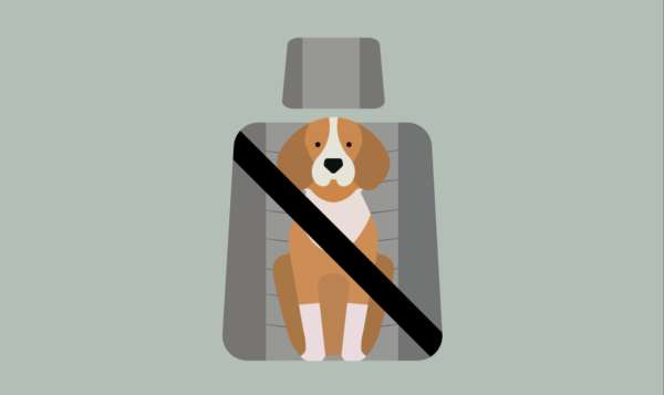 10 Strange Driving Laws (2)