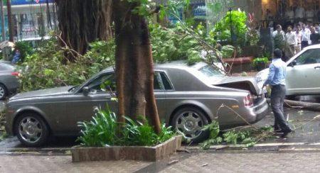 Tree branch falls on Rolls Royce Phantom (1)