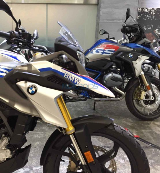 BMW G310 GS User Review (11)