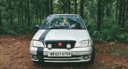 200 kmph Maruti Esteem front in forest
