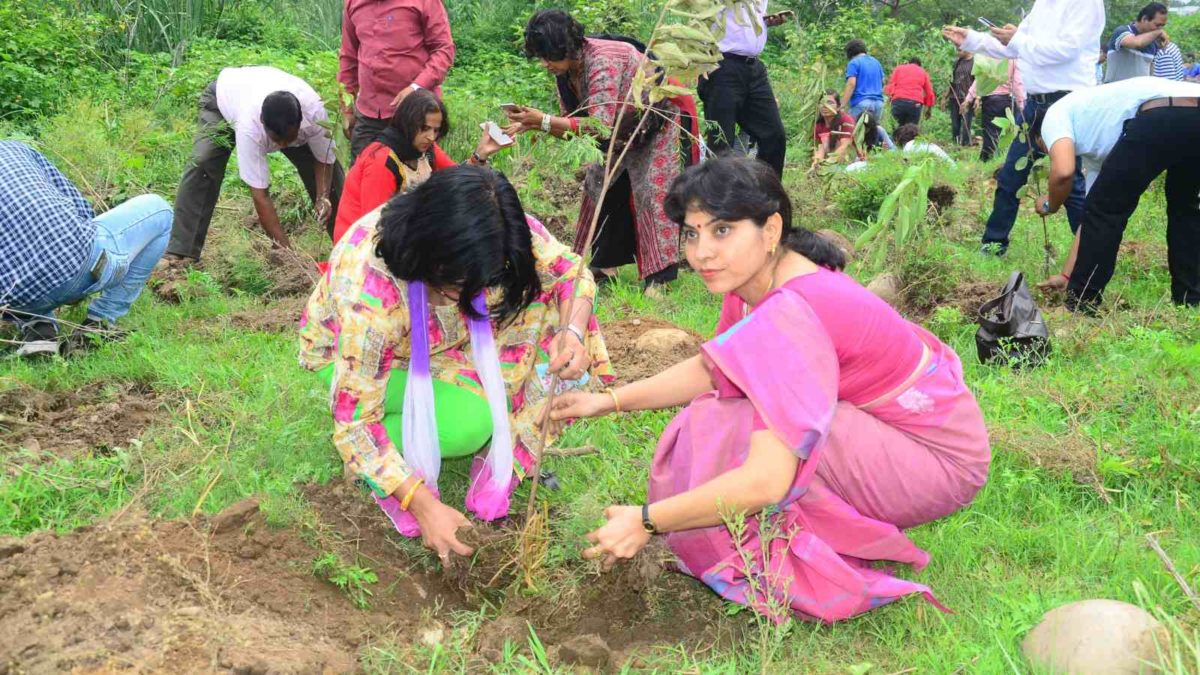 Hero MotoCorp Plantation drive 2