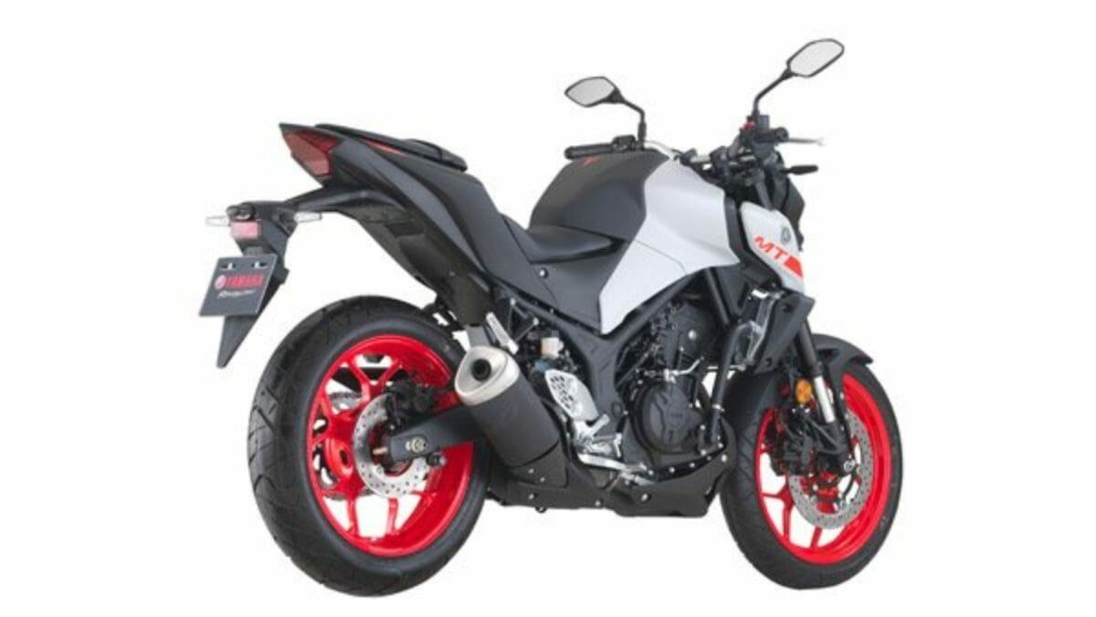 Yamaha MT 25 (2)
