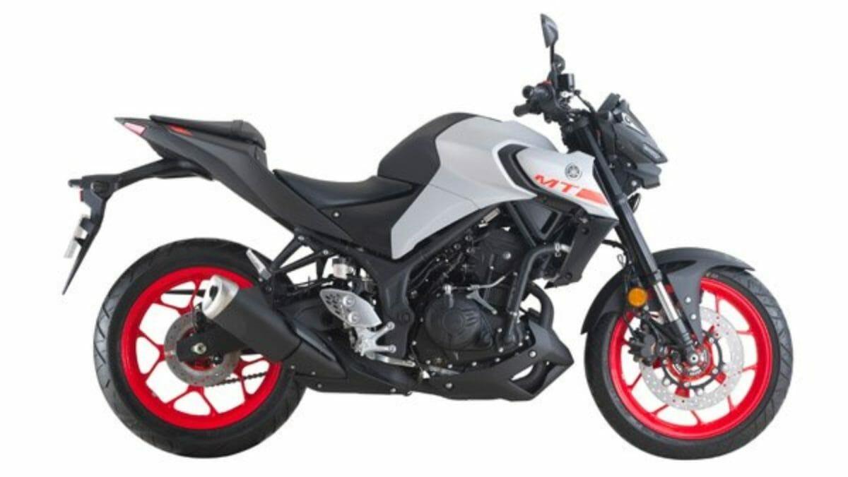 Yamaha MT 25 (3)