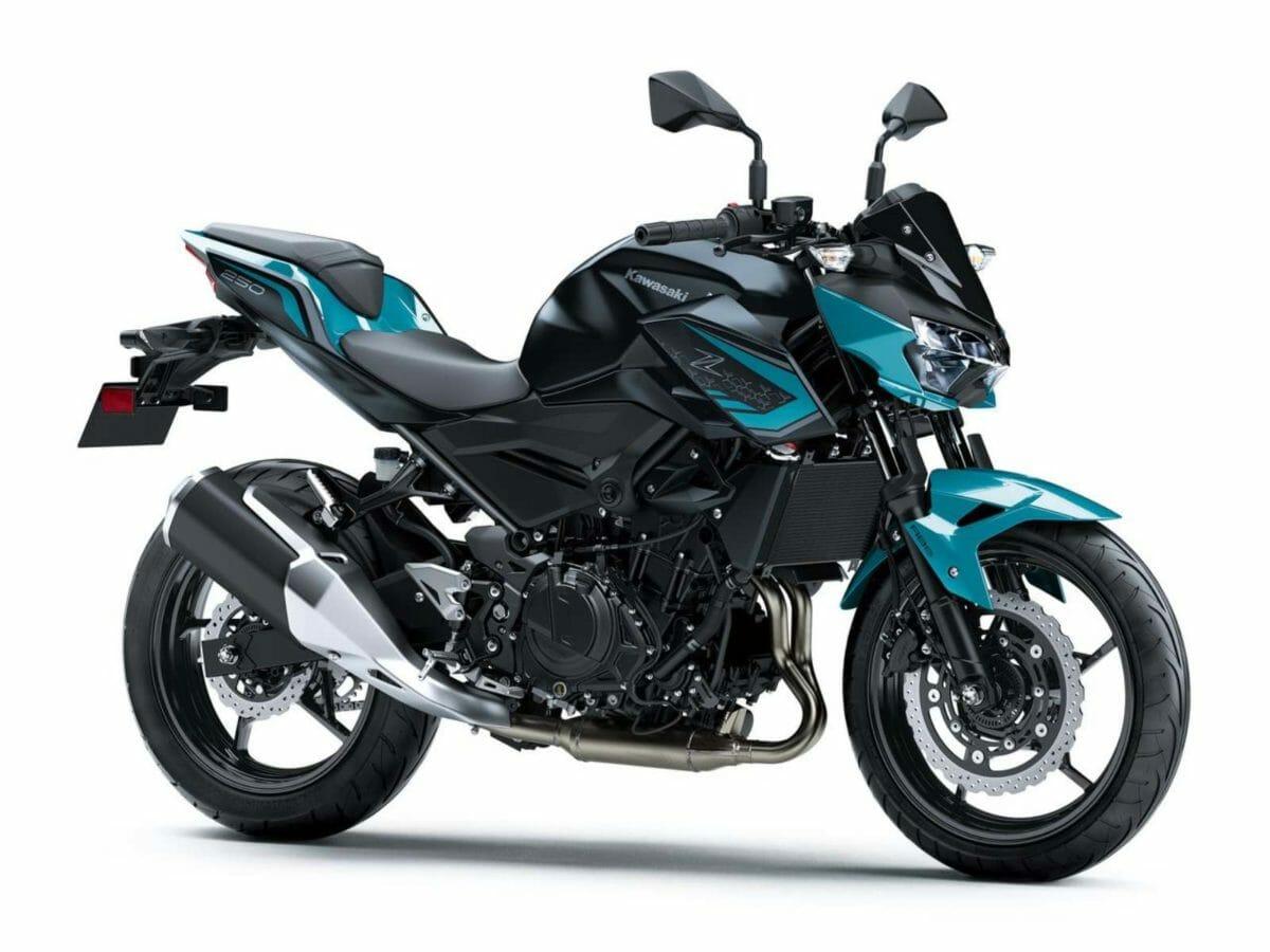 Kawasaki Z250 2021 (1)